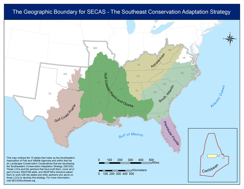 Southeast Conservation Adaptation Strategy Map