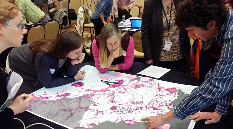 A group of conservation professionals investigating a map